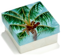 Palm tree with coconuts